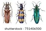 watercolor set of beetles... | Shutterstock . vector #751406500