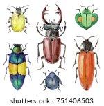 watercolor set of beetles... | Shutterstock . vector #751406503