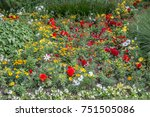 flower meadow in the castle park   Shutterstock . vector #751505086