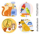 Stock vector pets design concept including cat with toy parrots near birdcage rodents dog with bones isolated 751516933