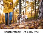 Stock photo unrecognizable active senior woman with dog on a walk in a beautiful autumn forest 751587793