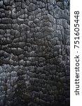 black charred wood log interior ... | Shutterstock . vector #751605448
