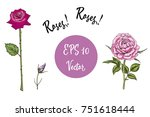 vector set of roses. isolated... | Shutterstock .eps vector #751618444
