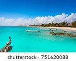 akumal bay caribbean beach... | Shutterstock . vector #751620088