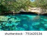 cenote in riviera maya of mayan ... | Shutterstock . vector #751620136