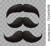 funny retro hair mustaches... | Shutterstock .eps vector #751643458