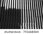 lights and shadows  | Shutterstock . vector #751668364