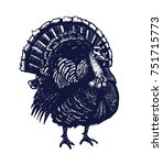 turkey hand drawn isolated... | Shutterstock .eps vector #751715773