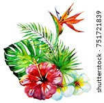beautiful tropical palm leaves... | Shutterstock . vector #751721839