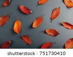 Beautiful Red And Orange Leaves ...