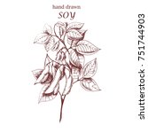 vector hand drawn soy. ink... | Shutterstock .eps vector #751744903