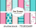 cute set of pink flamingo... | Shutterstock .eps vector #751832689