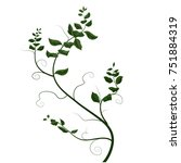 branch with curls and leaves ...   Shutterstock .eps vector #751884319
