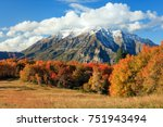blue sky and autumn leaves ... | Shutterstock . vector #751943494