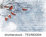 christmas card with bullfinches ... | Shutterstock . vector #751983304