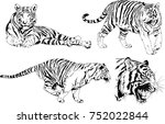 set of vector drawings on the... | Shutterstock .eps vector #752022844