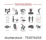 tapeworms. symptoms  treatment. ... | Shutterstock . vector #752076310