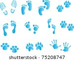 Collection Of Footprints