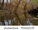 a quiet rivulet in the autumn...   Shutterstock . vector #752162170