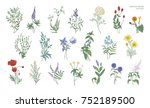 set of realistic detailed... | Shutterstock .eps vector #752189500