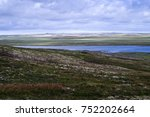 arctic flat colored tundra in... | Shutterstock . vector #752202664