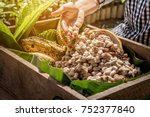 fresh cocoa pod cut exposing... | Shutterstock . vector #752377840