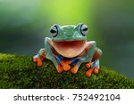 tree frog  flying frog laughing | Shutterstock . vector #752492104