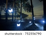 Light Painting Butterfly In Th...
