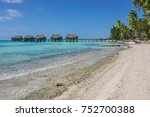 tropical sea shore with... | Shutterstock . vector #752700388