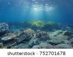 underwater rocks and seagrass... | Shutterstock . vector #752701678