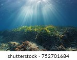 Natural Sunbeams Underwater...