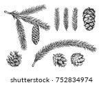 set of different cones and... | Shutterstock . vector #752834974