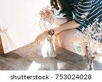 female holding dry flower pot... | Shutterstock . vector #753024028
