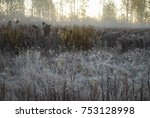 the first frost  fog in the... | Shutterstock . vector #753128998