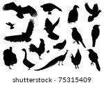 vector bird silhouettes | Shutterstock .eps vector #75315409