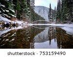 bridge and reflection. winter... | Shutterstock . vector #753159490