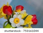 spring floral border  beautiful ...   Shutterstock . vector #753161044