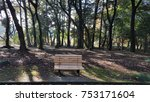 mini bench in park | Shutterstock . vector #753171604