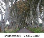 the dark hedges   beautiful... | Shutterstock . vector #753173380