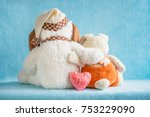 two soft toy dog and rabbit... | Shutterstock . vector #753229090