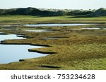 hilly polar tundra  around many ... | Shutterstock . vector #753234628