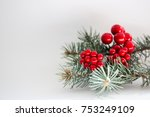 berries with fir  | Shutterstock . vector #753249109