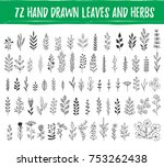 set of hand drawn leaves  herbs ... | Shutterstock .eps vector #753262438