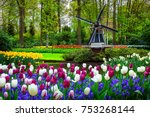 Small photo of Stunning spring landscape, famous Keukenhof garden with colorful fresh tulips, flowers and Dutch windmill in background, Netherlands, Europe