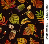 embroidery autumn seamless... | Shutterstock .eps vector #753306280