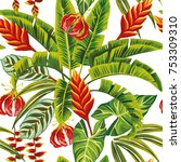 tropical exotic jungle flowers... | Shutterstock .eps vector #753309310