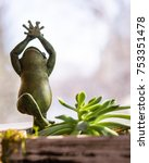 Yoga Frog In Tree Pose....