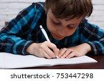 close up of diligent schoolboy...   Shutterstock . vector #753447298