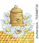 a round  bee hive from a straw  ... | Shutterstock . vector #753488710