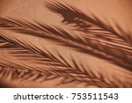 Shade Of Palm Leaves On A Wall...